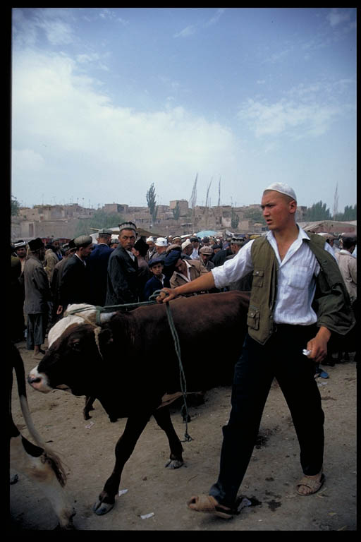 The stockyard at the Kashgar Sunday Market. Photo © Mark Mauchline.